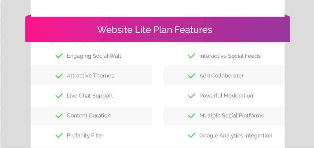 Website Lite Plan