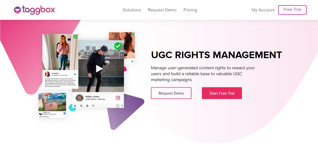 best UGC rights - Taggbox