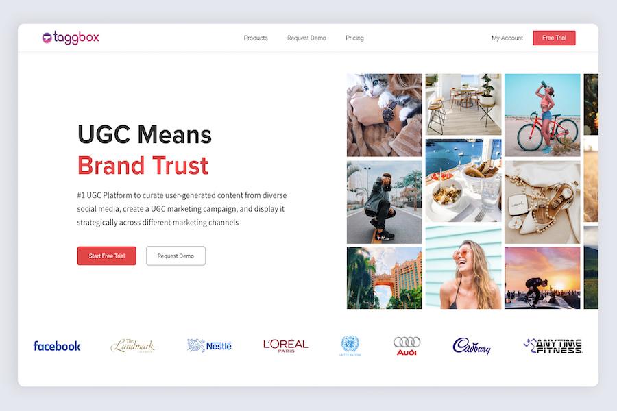 Taggbox - Best UGC Platform