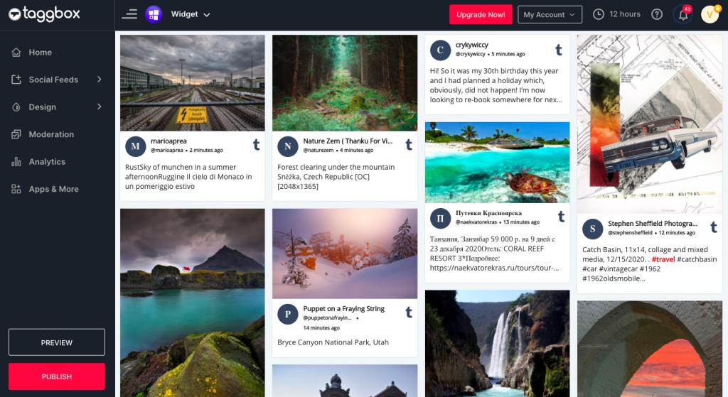 Display embed tumblr feed on website