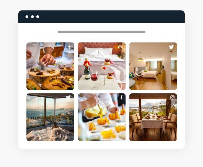 social media feed widget