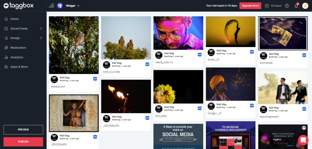 Preview & Publish Flickr Feeds Widget