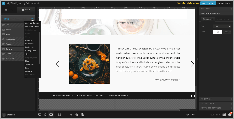 Display Instagram Feeds On Showit Website